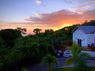 Très belle maisonnette décoration Jungle très bien placé jolie vue