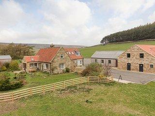Fryup GIll Cottage 1 - UK10951