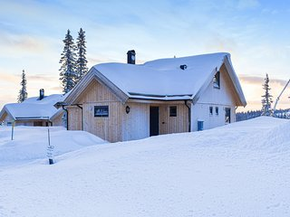 Awesome home in Sjusjoen w/ Sauna, WiFi and 4 Bedrooms (N31926)