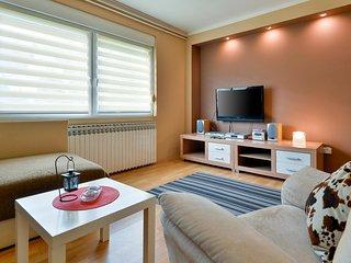 Stunning apartment in Sveti Ivan Zelina w/ 1 Bedrooms (CCC211)