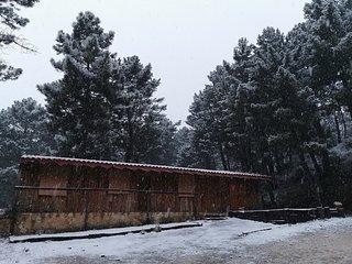 Cabaña de Montaña Parque Natural Calar Río Mundo