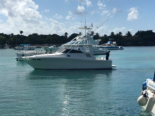 PRIVATE YATCH IN LA ROMANA ,TRIP TO ISLA SAONA, PALMILLA, CATALINA, FISHING.