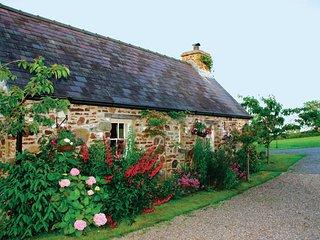 Primrose Cottage - HW7100