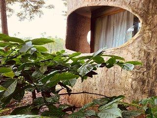 Rustic Charm Wayanad - The Stump
