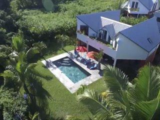 Grande Villa luxueuse d'architecte F6/7 avec piscine en ardoise, jardin arboré