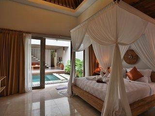 1 BR Pool Villa+Breakfast+Spa Center+Free Amenities   (Anlekh)