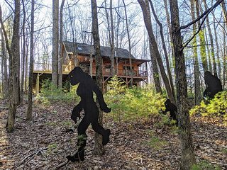 Powder Horn Cabin- Sleeps 8 - Pets Ok - Hike - Fish - Relax!