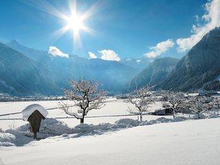 Alpenland (MHO254)