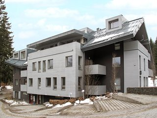 Amazing apartment in Harrachov w/ WiFi, WiFi and 1 Bedrooms