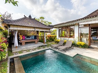 Devi's Place Ubud- space & privacy at Villa Intani