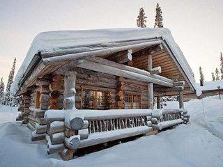Villa vuosselinjärvi