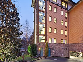Luxury downtown condo near Parkway attractions w/ shared pool, hot tub & gym!