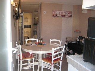 Location  tout confort appartement proche de Gerardmer, La Bresse, l'Alsace