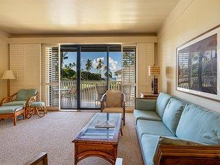 Split-Level Privacy+Ocean View! Furnished Lanai, WiFi, Full Kitchen, Flat