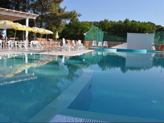 Nice studio with pool access