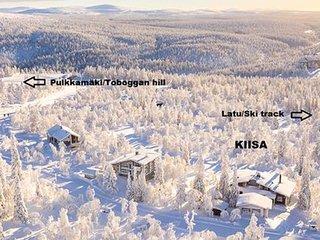 Kiisa b