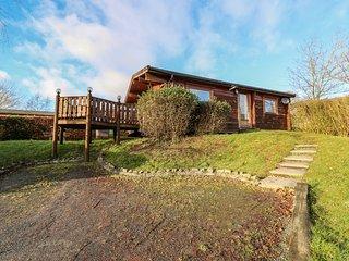 Snowy Owl Lodge, Rhayader