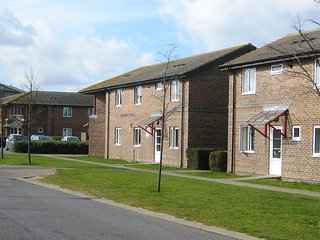 University Campus Park Wood