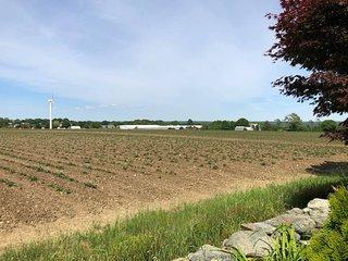 Farmland Guest House