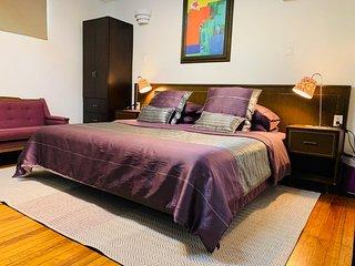 The Suites of Villa Mural; The Single's Studio; centric; near Condesa & the WTC