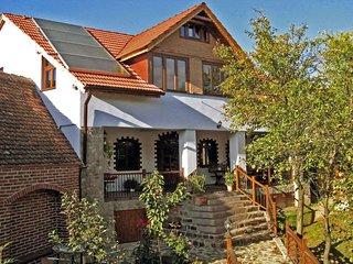 • Casa Crina • our jewel for high demands • vacation villa Romania Transylvania