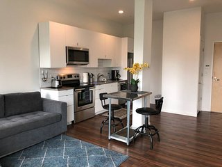Sunset 404 GreenLine | 1BR 1BA | Walk to Brigham and Women's and GreenLine Troll