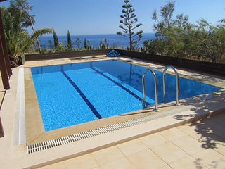 Apt/Studio Anemospito fantastic Sea view, Garden and private Pool