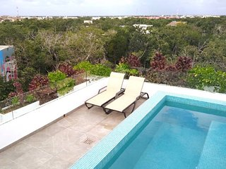 Private Roof w Plunge Pool, Brand New 2 Br Penthouse for 6 sleeps