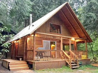 17MBR Rustic Family Cabin