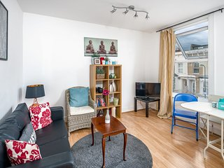 Comfortable 1BDR Apt sleeps 4 in East London