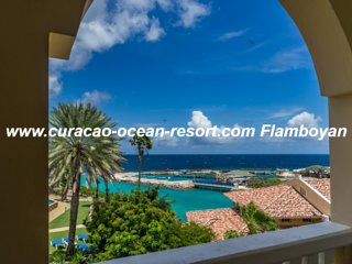 Flamboyan Curacao Ocean Resort * walk to Mambo Beach * see the dolphins Jump *