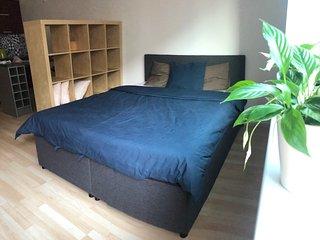 Apartment near the city center of Brno