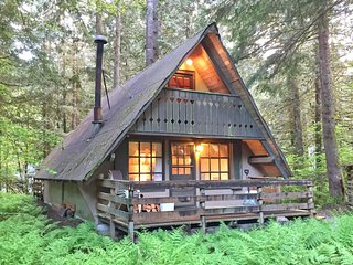 86SL Rustic Cabin near Mt. Baker