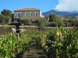 Sciaraviva, characteristic Sicilian house surrounded by an organic vineyard.