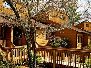 Cozy 1 Bedroom Near Sapphire Valley Ski Area w/ Resort Indoor Pool., WiFi & More