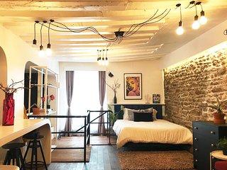 large cosy loft style apartment- Ile St Louis Heart of Paris