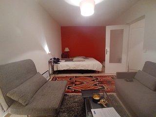 Spacious apartment with BALCON