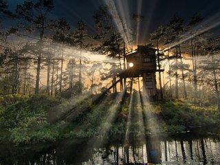 Wilderness Tower - TreeTop Fiddan