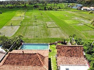 NEW ! LAUNCHING PROMO, Incredible Wooden Villa, 5 BR, Ubud w/ Staff