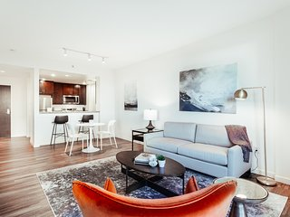 Stunning Mission Bay Luxury Apartment