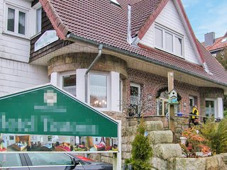 Nice apartment in Braunlage w/ WiFi and 1 Bedrooms (DAN232)