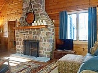 Secluded Quaint Log Cabin on Wooded 1/2 with WIFI, Cable, Stone Fireplace,