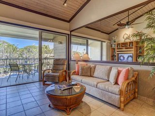 Napili Shores E-243 Beautiful remodel with Air Conditioning - steps to Napili Ba