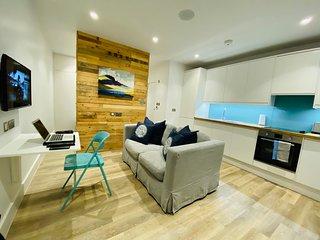 Beautiful Studio Apartment Clapham Common