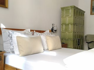 Historical  Danube view apartment ,AC,wifi,free minibar,personal welcome (FKY)