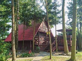 Stunning home in Boreczno w/ 2 Bedrooms (PMA536)