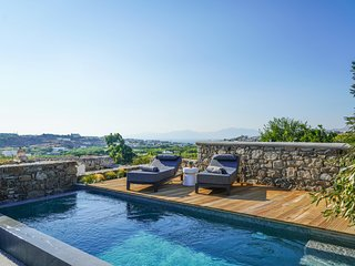 Ikies of Mykonos - Grand Executive Villa with private pool