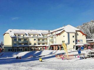Ferienwohnung Lounge Fôret Noire direkt an der Skipiste, Ski In, Ski OUT