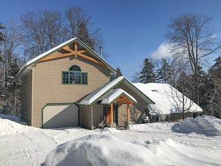 Modern craftsman lodge w/ fireplace & sauna - near skiing/Lockwood Brook