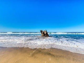 Quiet oceanfront getaway w/ocean views, walk to beach - dogs ok!